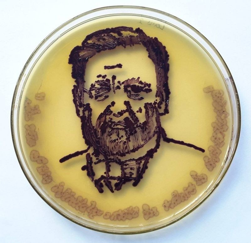 agar-art-contest-8[2]