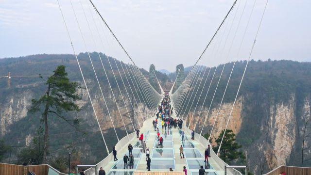 Modern Parametric Bridges